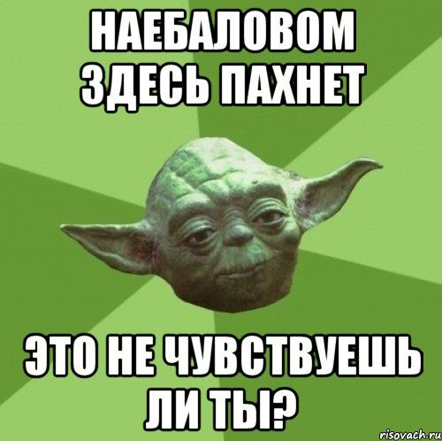 9436CCBC-2CD0-4B21-A0C5-B7B4539DD23D.jpeg