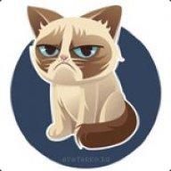 Сердитый_кот