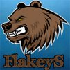 FlakeyS