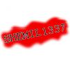shemil1337