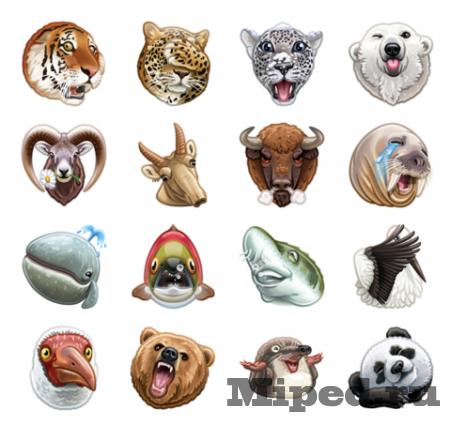 Как бесплатно получить набор стикеров ВКонтакте от WWF
