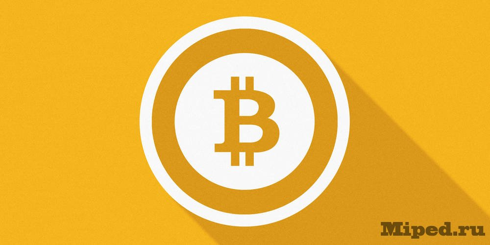 Алекс форк bitcoin больше чем деньги-1